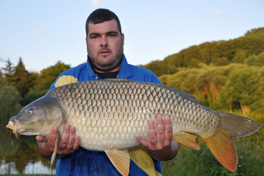 Common carp photo gallery Etang de Azat-Chatenet fishing lake in France
