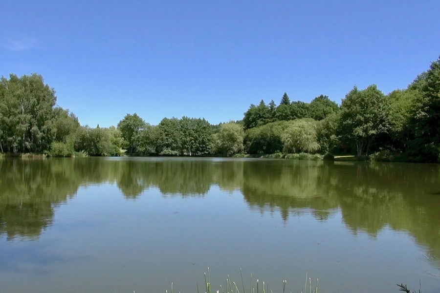 Tranquil and private fishing lake in France Etang de Azat-Chatenet