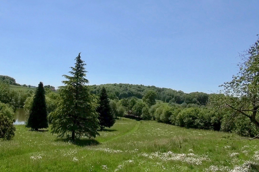 Wild meadow and grounds at Etang de Azat-Chatenet fishing lake in France